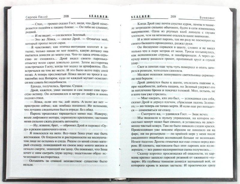 Иллюстрация 1 из 12 для Бумеранг - Сергей Палий | Лабиринт - книги. Источник: Лабиринт