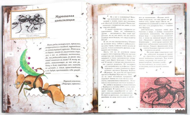 Иллюстрация 2 из 106 для Письма насекомых - Ольга Кувыкина | Лабиринт - книги. Источник: Лабиринт