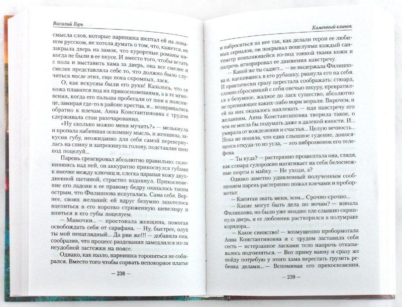 Иллюстрация 1 из 4 для Каменный клинок - Василий Горъ | Лабиринт - книги. Источник: Лабиринт