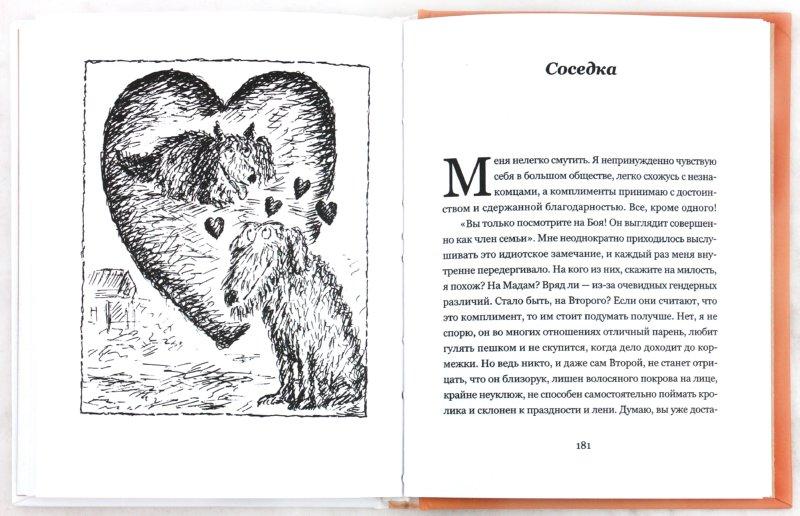 Иллюстрация 1 из 18 для Собачья жизнь - Питер Мейл | Лабиринт - книги. Источник: Лабиринт