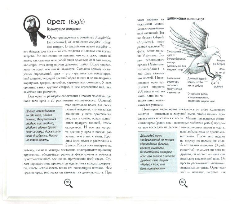 Иллюстрация 1 из 20 для Книга животных заблуждений - Фрай, Ллойд, Митчинсон | Лабиринт - книги. Источник: Лабиринт