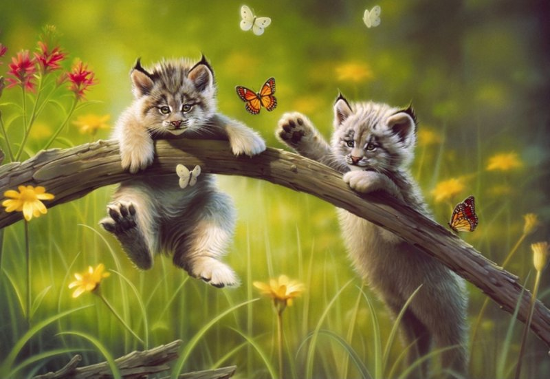 "Иллюстрация 1 из 5 для Пазл-500 ""Котята"" (13413) | Лабиринт - игрушки. Источник: Лабиринт"