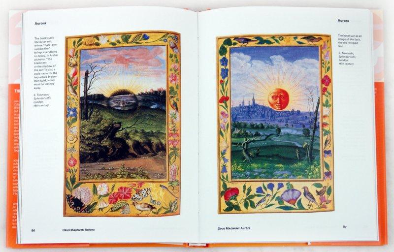 Иллюстрация 1 из 11 для Alchemy & Mysticism - Alexander Roob | Лабиринт - книги. Источник: Лабиринт