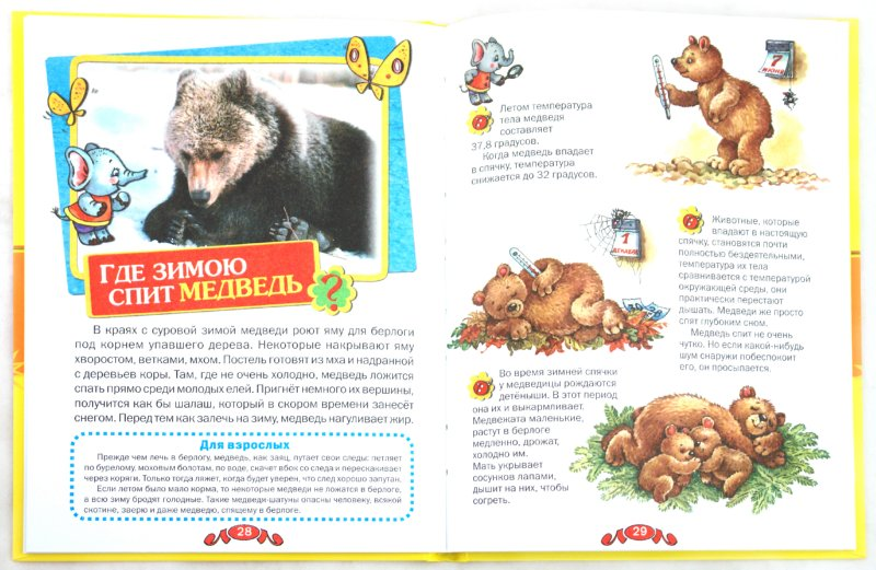 Иллюстрация 1 из 19 для Удивительные животные - Татьяна Комзалова | Лабиринт - книги. Источник: Лабиринт