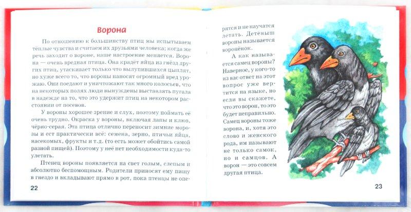 Иллюстрация 1 из 24 для Мир вокруг нас - Галина Шалаева   Лабиринт - книги. Источник: Лабиринт