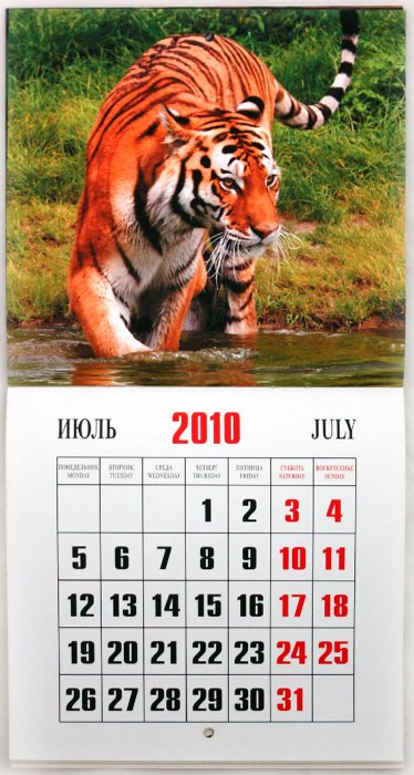 Иллюстрация 1 из 15 для Календарь 2010 Год тигра (0607) | Лабиринт - сувениры. Источник: Лабиринт