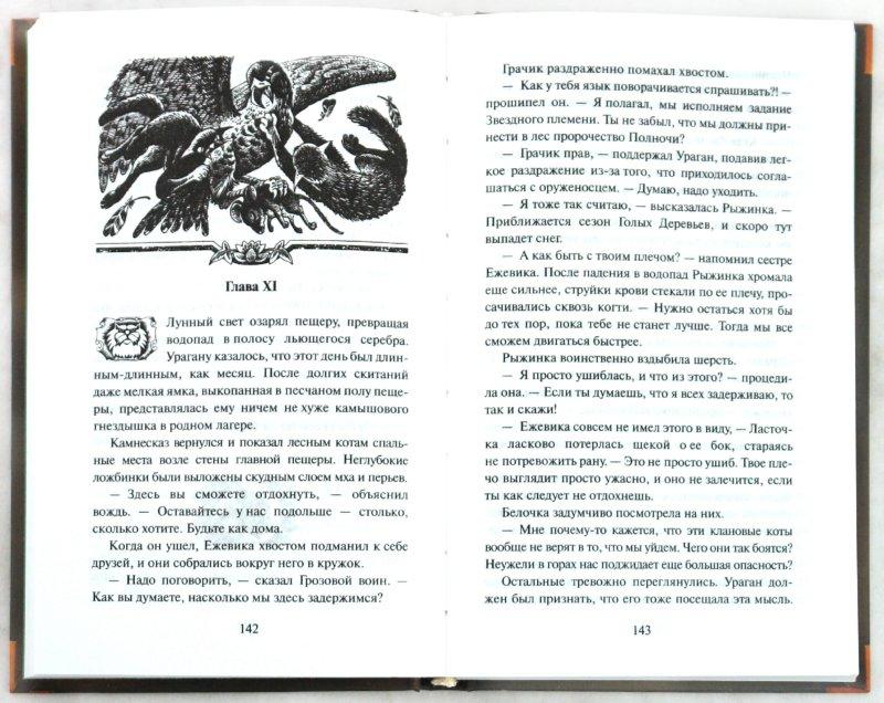 Иллюстрация 1 из 7 для Восход луны - Эрин Хантер | Лабиринт - книги. Источник: Лабиринт