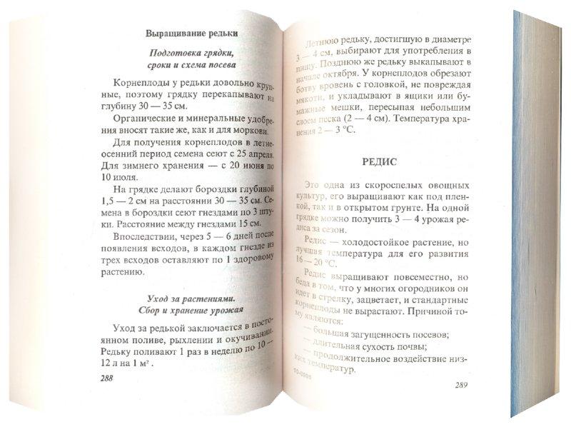 Иллюстрация 1 из 8 для Советы огородникам - Ганичкина, Ганичкин | Лабиринт - книги. Источник: Лабиринт