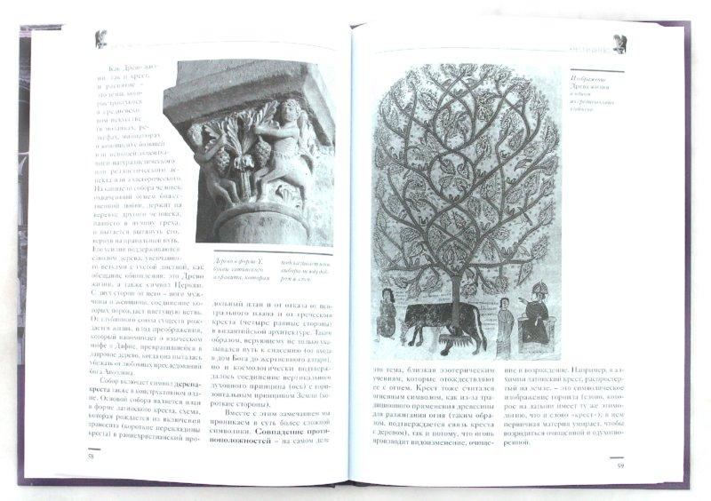 Иллюстрация 1 из 23 для Тайны соборов, или Соборы тайны   Лабиринт - книги. Источник: Лабиринт