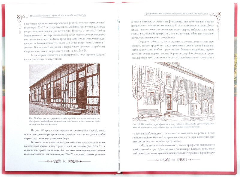 Иллюстрация 1 из 5 для Использование стен строений под шпалерные культуры - Рудольф Гете | Лабиринт - книги. Источник: Лабиринт
