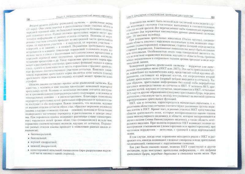 Иллюстрация 1 из 17 для Нейропсихология. Учебник для вузов. 4-е издание (+CD) - Евгения Хомская | Лабиринт - книги. Источник: Лабиринт
