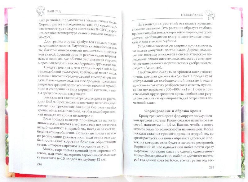 Иллюстрация 1 из 33 для Новая энциклопедия садовода и огородника - Ганичкина, Ганичкин   Лабиринт - книги. Источник: Лабиринт