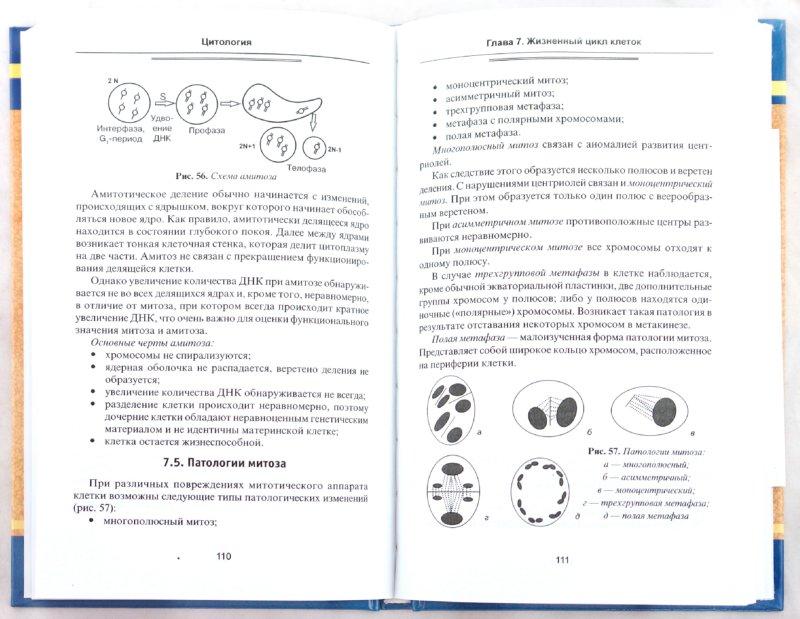 Иллюстрация 1 из 16 для Цитология. Учебное пособие (+CD) - Цаценко, Бойко | Лабиринт - книги. Источник: Лабиринт