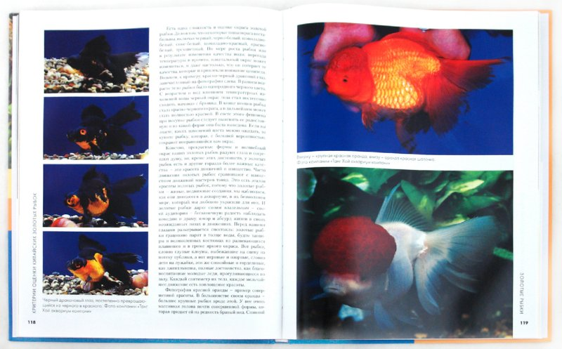 Иллюстрация 1 из 9 для Золотые рыбки. Полное руководство по лечению, содержанию, уходу и разведению - Джонсон, Гесс | Лабиринт - книги. Источник: Лабиринт