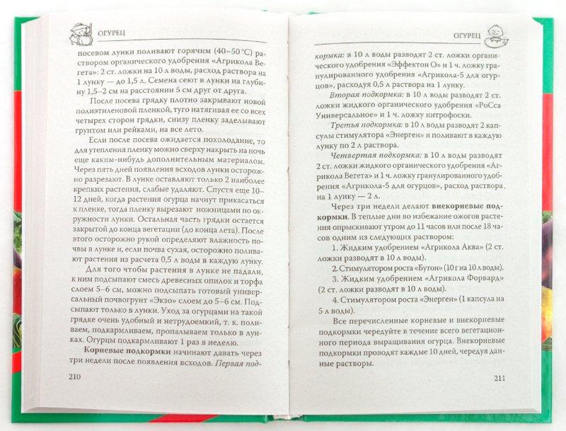 Иллюстрация 1 из 4 для Настольная книга огородника - Ганичкина, Ганичкин | Лабиринт - книги. Источник: Лабиринт