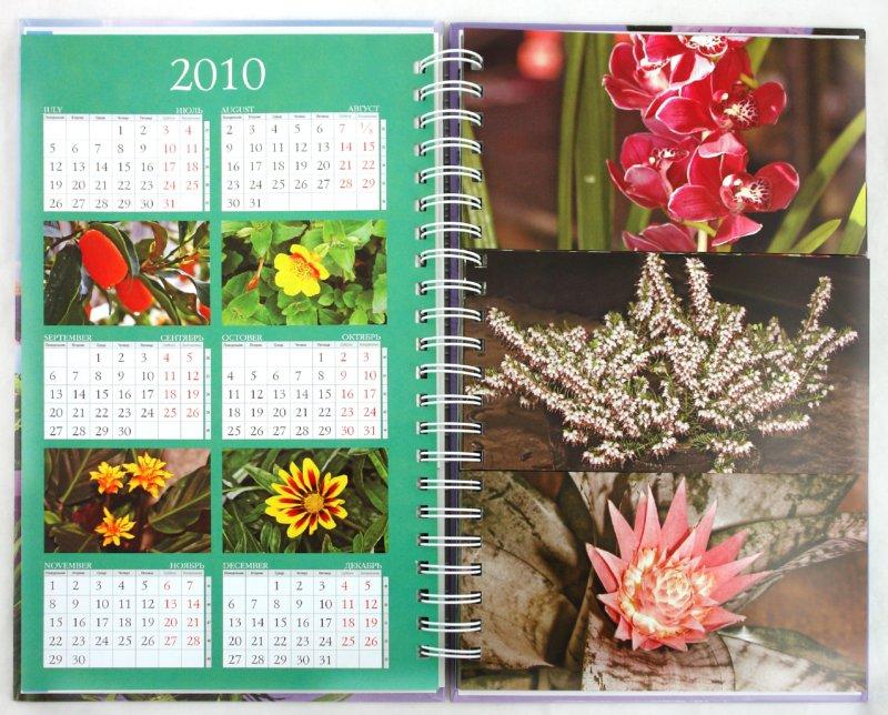 Иллюстрация 1 из 15 для Миллион цветов для уюта вашего дома - Князева, Князева | Лабиринт - книги. Источник: Лабиринт