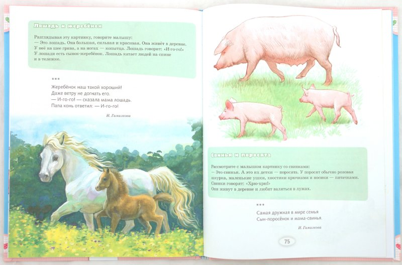 Иллюстрация 1 из 17 для Я учусь. Занятия с малышом от 6 месяцев и старше | Лабиринт - книги. Источник: Лабиринт