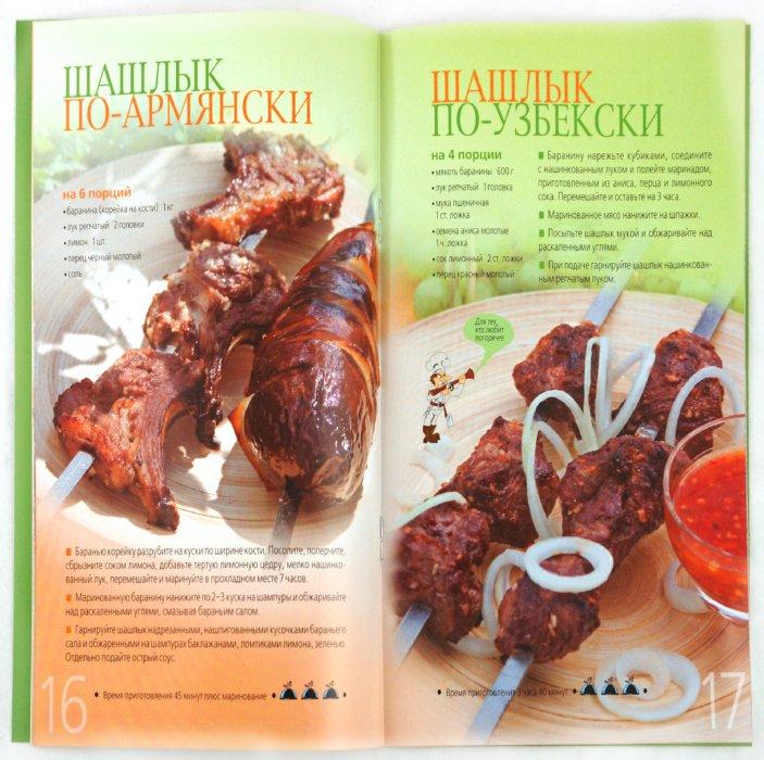 Иллюстрация 1 из 24 для Шашлыки: лучшие рецепты   Лабиринт - книги. Источник: Лабиринт