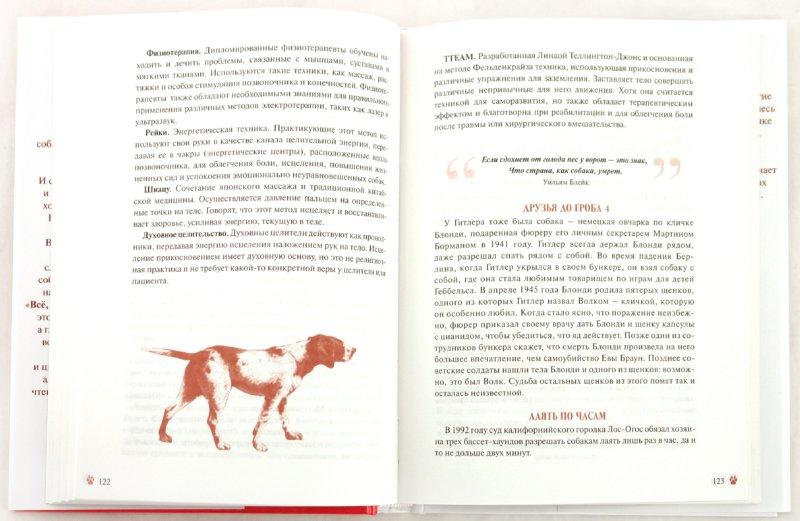 Иллюстрация 1 из 6 для Все, что собаки хотят, чтобы вы о них знали - Карен Буш   Лабиринт - книги. Источник: Лабиринт