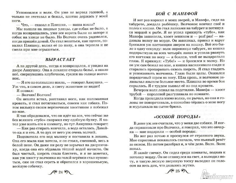 Иллюстрация 1 из 8 для Рассказы о животных - Борис Житков | Лабиринт - книги. Источник: Лабиринт