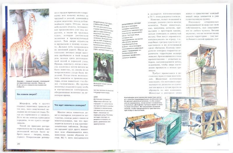 Иллюстрация 1 из 27 для Звери в зоопарке - Андреа Мертини | Лабиринт - книги. Источник: Лабиринт