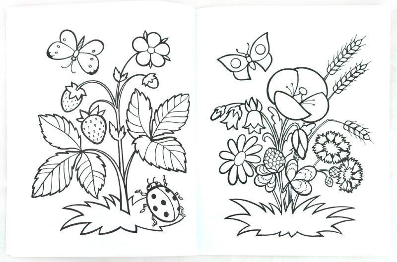 Иллюстрация 1 из 14 для Времена года. Малышам от 3 до 5 лет | Лабиринт - книги. Источник: Лабиринт