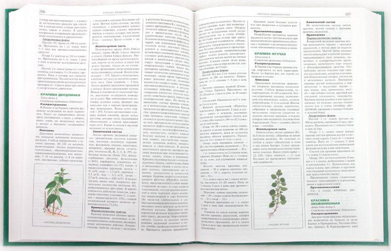Иллюстрация 1 из 4 для Лекарственные растения. Самая полная энциклопедия - Лебеда, Джуренко, Исайкина | Лабиринт - книги. Источник: Лабиринт