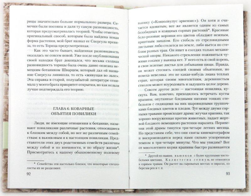 Иллюстрация 1 из 25 для Занимательная ботаника - Александр Цингер | Лабиринт - книги. Источник: Лабиринт
