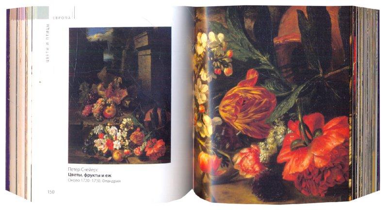 Иллюстрация 1 из 20 для Эрмитаж. Цветы и птицы | Лабиринт - книги. Источник: Лабиринт