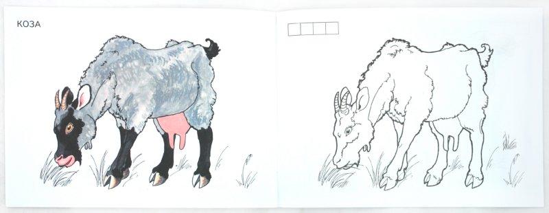 Иллюстрация 1 из 6 для Домашние животные | Лабиринт - книги. Источник: Лабиринт