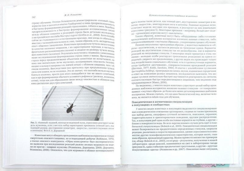 Иллюстрация 1 из 9 для Когнитивные исследования. Проблема развития | Лабиринт - книги. Источник: Лабиринт