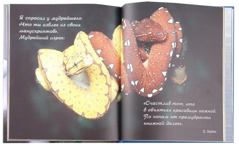 Иллюстрация 1 из 24 для Любовь - это всё! | Лабиринт - книги. Источник: Лабиринт