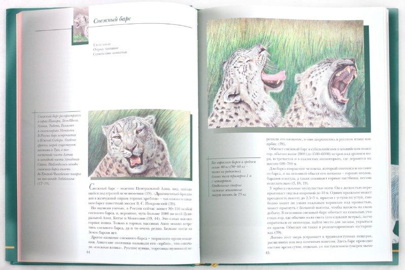 Иллюстрация 1 из 46 для Прогулки по Московскому зоопарку художника Александра Костина | Лабиринт - книги. Источник: Лабиринт