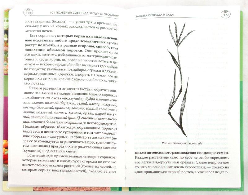 Иллюстрация 1 из 31 для 101 полезный совет садоводу-огороднику - Мария Цветкова   Лабиринт - книги. Источник: Лабиринт
