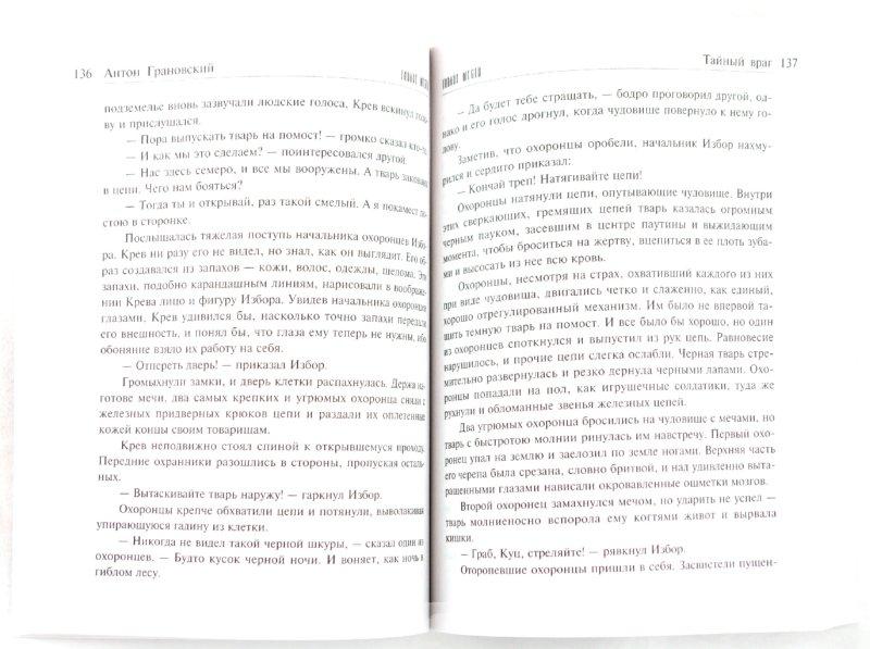 Иллюстрация 1 из 22 для Тайный враг - Антон Грановский | Лабиринт - книги. Источник: Лабиринт
