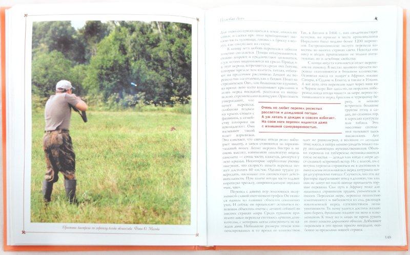 Иллюстрация 1 из 39 для Охота на пернатую дичь - Олег Малов | Лабиринт - книги. Источник: Лабиринт