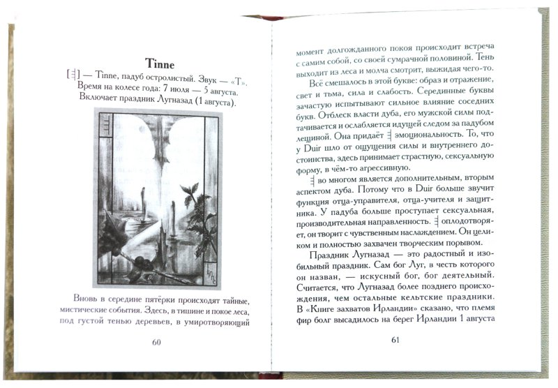 Иллюстрация 1 из 15 для Лестница Огама. Рунический алфавит друидов. Книга + набор открыток - Алла Киселева   Лабиринт - книги. Источник: Лабиринт
