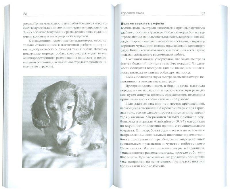 Иллюстрация 1 из 6 для Такса - Курт Шмидт-Дуйсберг   Лабиринт - книги. Источник: Лабиринт