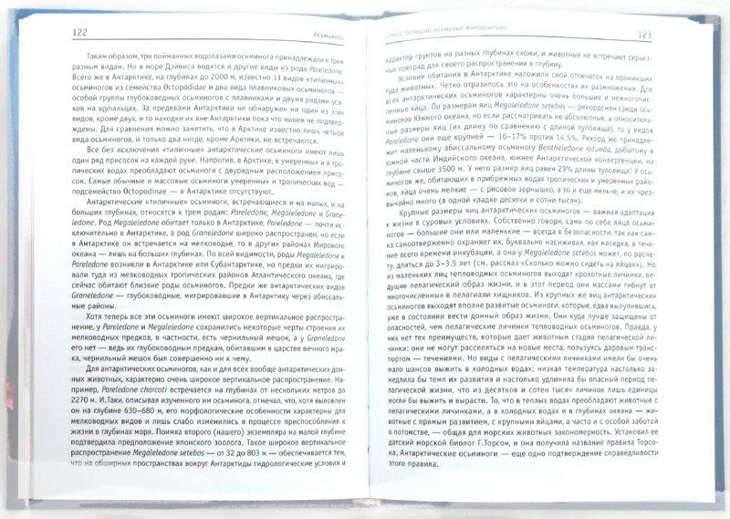 Иллюстрация 1 из 18 для Головоногие: умные и стремительные - Кир Несис | Лабиринт - книги. Источник: Лабиринт