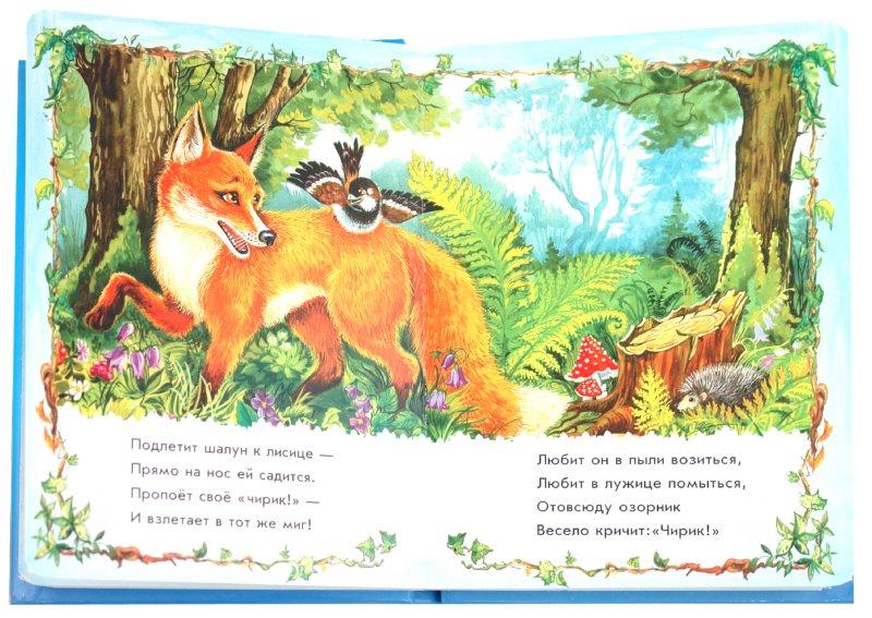 Иллюстрация 1 из 8 для Тигренок - Светлана Зайцева | Лабиринт - книги. Источник: Лабиринт