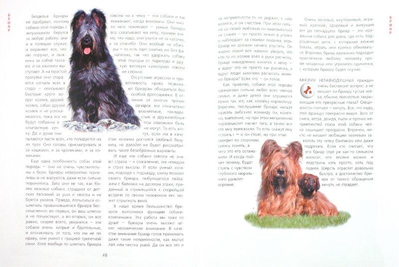 Иллюстрация 1 из 8 для Если у вас есть собака - Ольга Волкова   Лабиринт - книги. Источник: Лабиринт