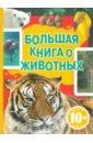 Джудичи К., Каневаро Сильвия, Ратто Симона Большая книга о животных
