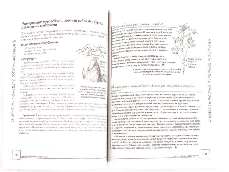 Иллюстрация 1 из 7 для Книга умного садовода. Лучшие способы, методы, приемы и идеи - Бенджамин, Мартин | Лабиринт - книги. Источник: Лабиринт