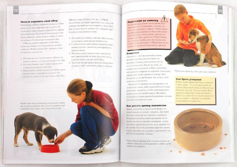 Иллюстрация 1 из 16 для Как воспитать щенка. Практическое руководство для детей и родителей - Сара Уайтхед   Лабиринт - книги. Источник: Лабиринт