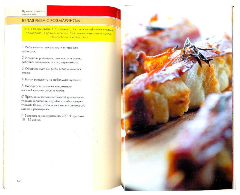 Иллюстрация 1 из 5 для Лучшие рецепты шашлыков | Лабиринт - книги. Источник: Лабиринт