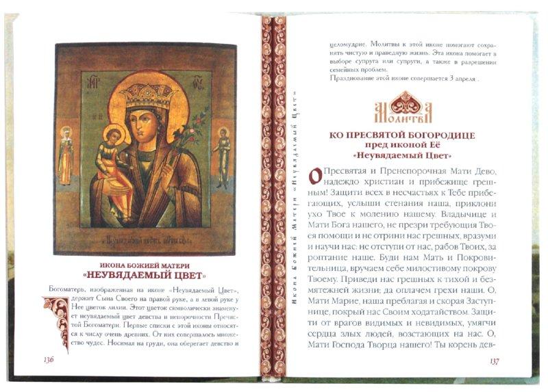 Иллюстрация 1 из 6 для Молитвы ко Пресвятой Богородице пред чудотворными иконами Ея | Лабиринт - книги. Источник: Лабиринт