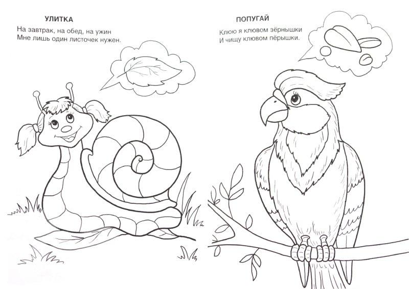 Иллюстрация 1 из 16 для Живой уголок - Т. Коваль | Лабиринт - книги. Источник: Лабиринт