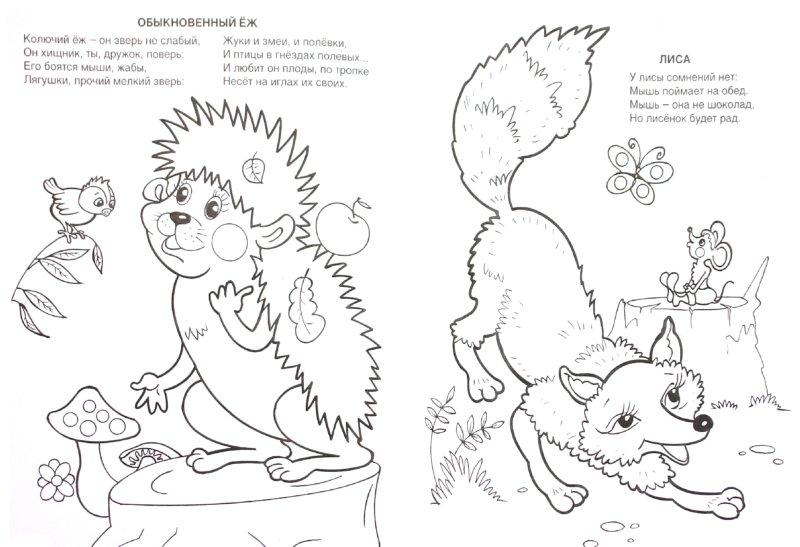 Иллюстрация 1 из 19 для Кто обедает в лесу - Юрий Чичев | Лабиринт - книги. Источник: Лабиринт