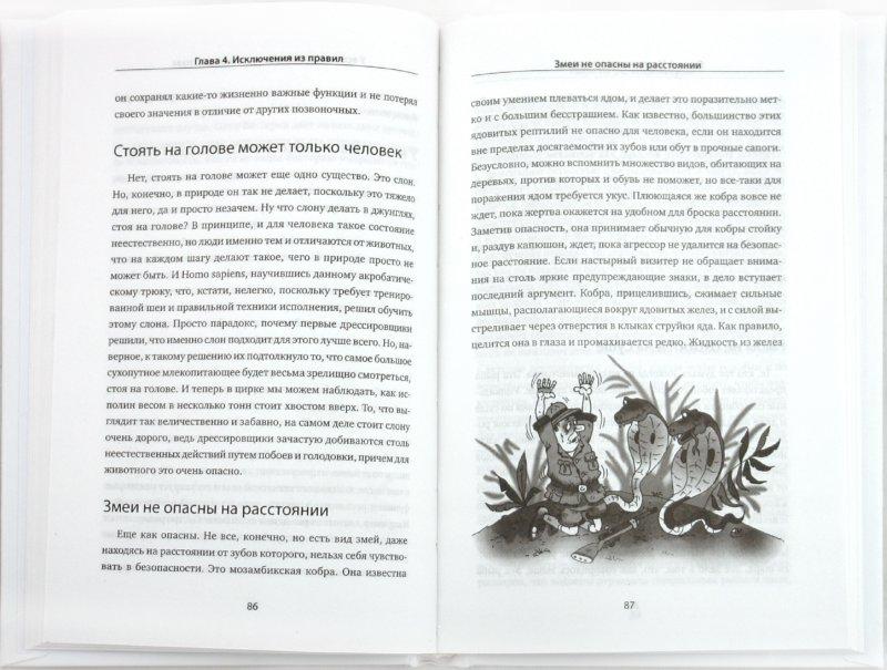 Иллюстрация 1 из 7 для Заблуждения о животных - Михаил Черничкин   Лабиринт - книги. Источник: Лабиринт