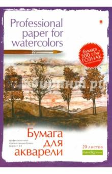Папка для акварели 20 листов. (4-021) бумага для пастели 20 листов а3 4 089